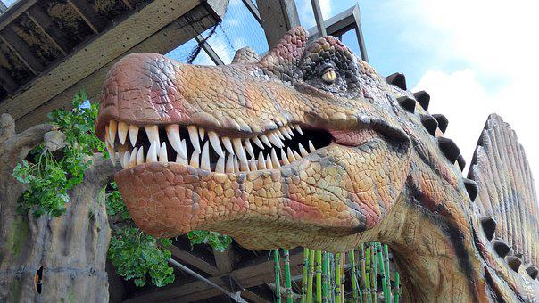 Dinosaur, Head, Dino, Giant Lizard, T Rex, Replica