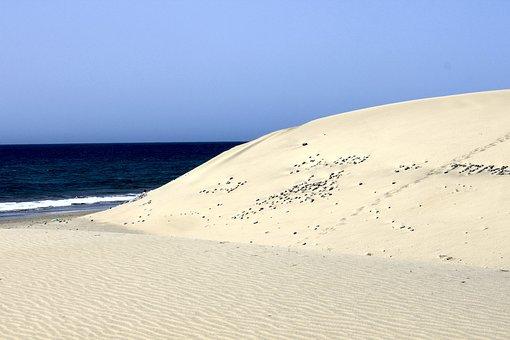 Maspalomas, Gran Canaria, Beach, Spain, Canary Islands