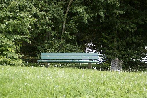 Park Bench, Bank, Tranquility Base, Walk, Go For A Walk