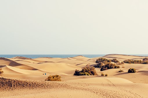 Dunes, Holiday, Sand, Maspalomas, Canary Islands