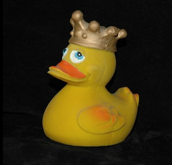 Rubber Duck, Bath Duck, Squeak Duck, Duck, Crown, King