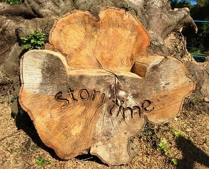 Wood, Story, Story Time, Storytelling, Tree, Seat