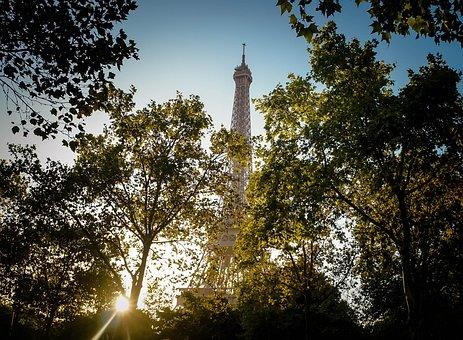 Eiffel, Tour, Eiffel Tour, Paris, France, Trees, Green