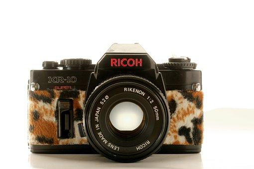 Camera, Plush, Hipster, Leopard, Pink, Fur, Old