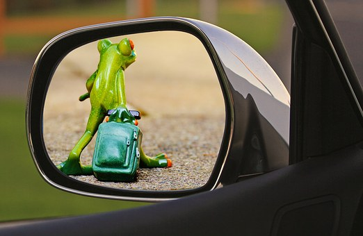 Time To Go, Frog, Farewell, Sad, Luggage, Trolley