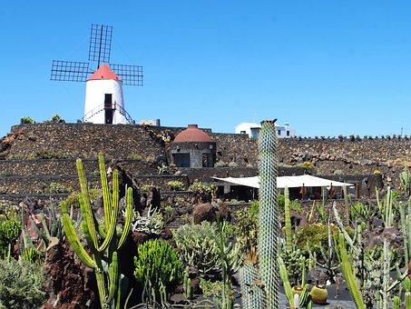 Lanzarote, Cactus Garden, Mill, Walls, Spice, Nature