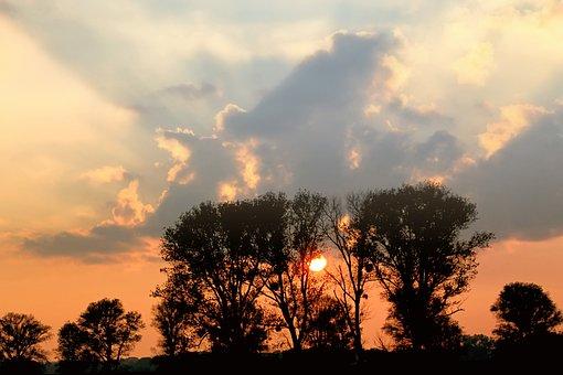 Sunset, Abendstimmung, Afterglow, Romance, Treetop