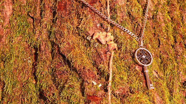 Key, Wood, Oak, Jewellery, Moss, Necklace