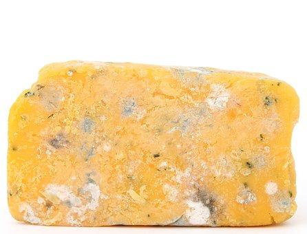 Age, Bacteria, Bio, Biology, Blue, Brie, Bug, Cheese