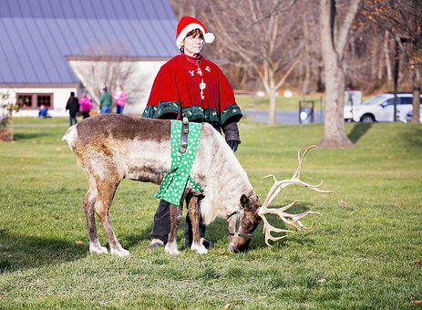 Reindeer, Christmas, Santa Claus, Costume, Red, Funny