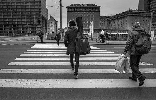Zebra, Person, Crossing, People, Road, Street, Traffic