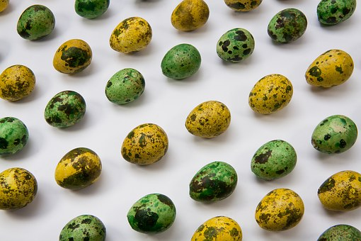 Egg, Quail Egg, Colored, Happy Easter, Easter
