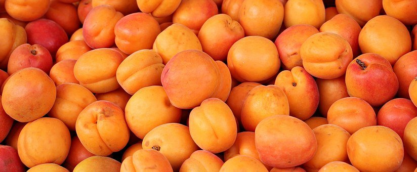 Apricots, Fruit, Fruits, Sweet, Healthy, Delicious, Eat