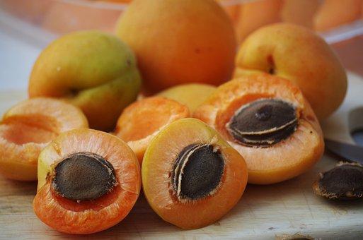 Apricots, Fruit, Orange, Pips, Sliced, Drying