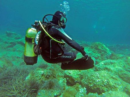 Scuba Diver, Scuba, Diver, Padi, Water, Underwater, Sea