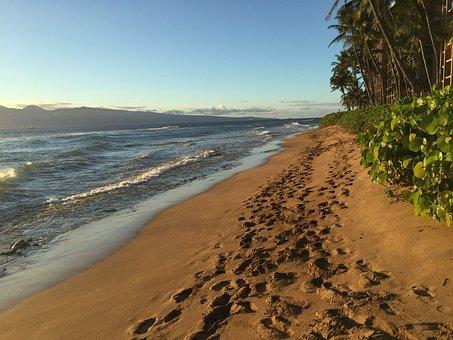 Footprints, Sand, Beach, Travel, Sea, Water, Walk