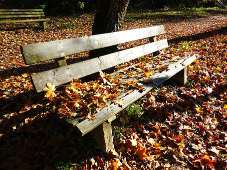 Bank, Autumn, Leaves, Sun, Fall Leaves, Benches, Park
