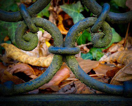 Wrought Iron, Iron Gate, Moss, Metal, Metal Art