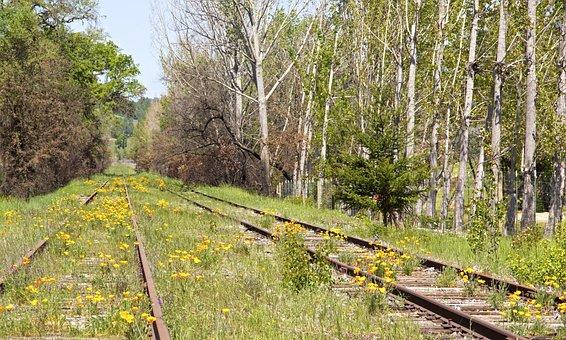 Railroad, Tracks, Train, Railway, Rail, Line