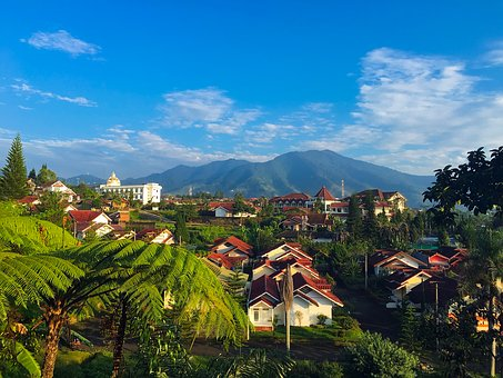 West Java, Indonesia, Palm Trees, Tropics, Tropical