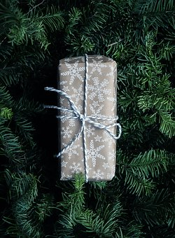 Christmas, Holiday, Tree, Package, Gift, Surprise