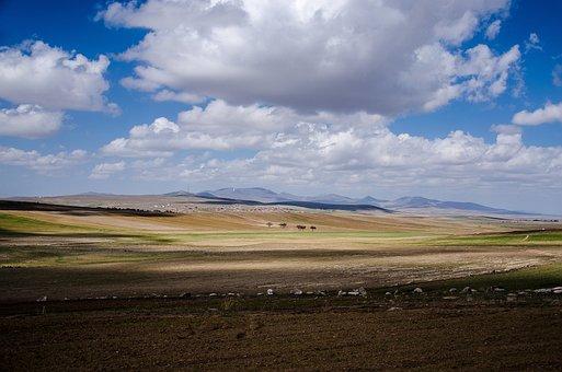 Trees, Sky, Mountains, Travel, Clouds, Cappadocia