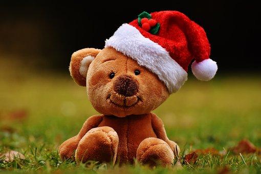 Christmas, Teddy, Soft Toy, Santa Hat, Funny