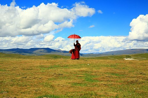 Buddhist Believers, Scenery, Prairie, Green, Landscape