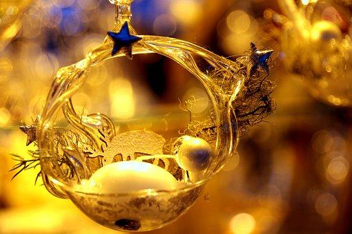 Christmas, Christmas Lights, Snow, Deer, Reindeer
