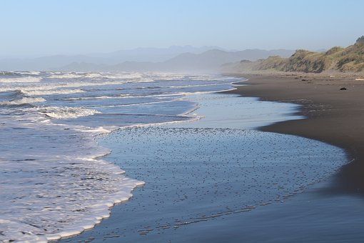 Sea, New Zealand, North Island, Coast, Beach, Nature