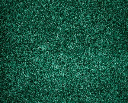 Grass, Abstract, Backdrop, Background, Beautiful, Clean