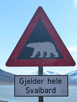 Polar Bears, Caution, Spitsbergen