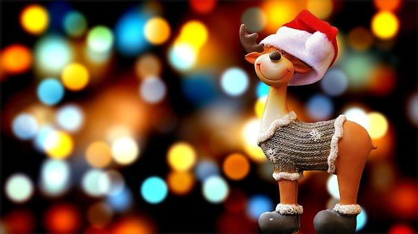 Moose, Christmas, Christmas Motif, Reindeer, Winter