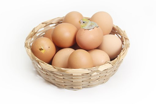 Basket, Egg, Brown, Chicks, Hatch, Lamp, Warm, Small