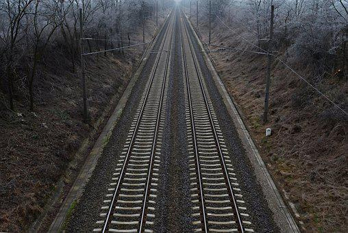 Rail, Winter, Nature, Cold, Choice