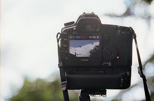 Digital Camera, Movie, Video, Camera, Digital, Media