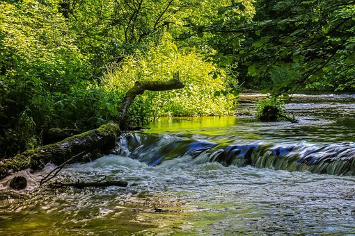 River, Cascade, Water, Nature, Forest, Landscape, Brook