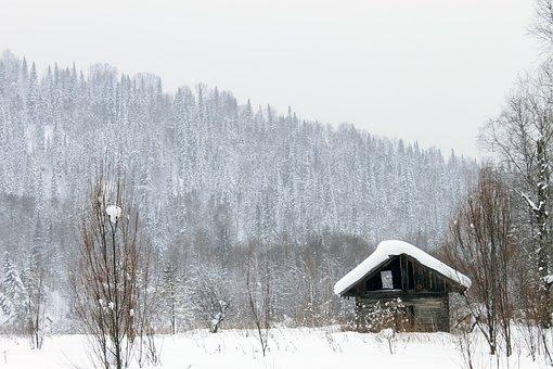 House, Barn, Hut, Forest, Landscape, Trees, Winter
