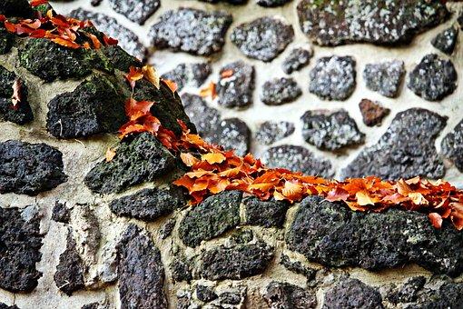 Wall, Feilenmoos, Clumping Stone, Autumn, Leaves, Ruin