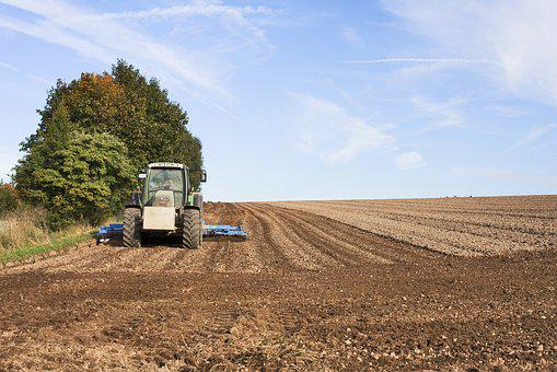 Arable, Agriculture, Agricultural Tractor, Agricultural