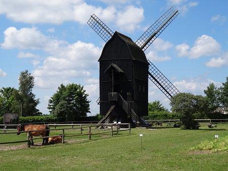 Windmill, Mill, Mecklenburg
