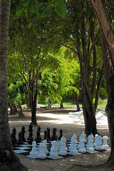 Chess, Game, Beach, Pastime, Leisure, Trees, Green