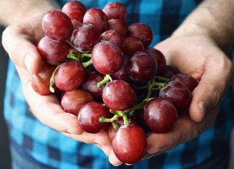 Grapes, Hands Holding, Palm, Fingers, Fruit, Shirt