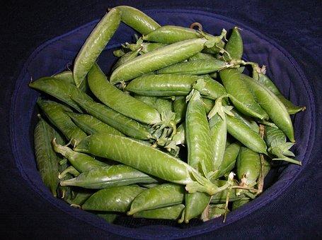 Pea, Pods, Harvest, Crop, Hat, Vegetable, Fresh, Legume