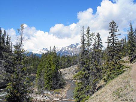Alaska, Usa, Photo, Snow, Nature, Travel, America