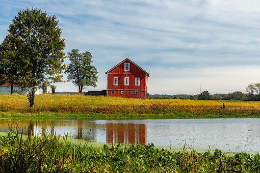 Ohio, Farm, Agriculture, Barn, Red, Pond, Water