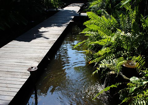Bridge, Walkway, Nature, Travel, Outdoor, Wooden, Park