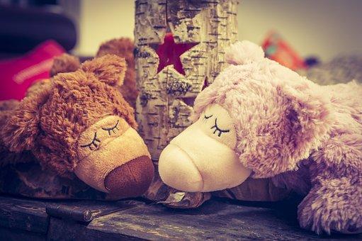 Bear, Star, Teddy Bear, Sleep, Rest, Togetherness