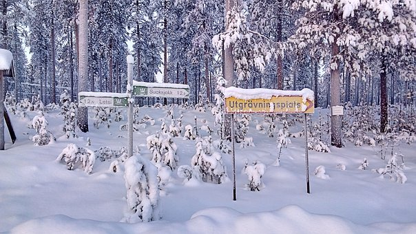 Directory, Snowy, Wintry, Shield, Lapland, Sweden