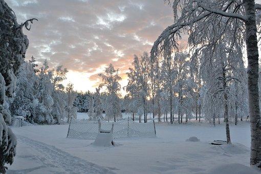 Lapland, Sweden, Wintry, Landscape, Snow